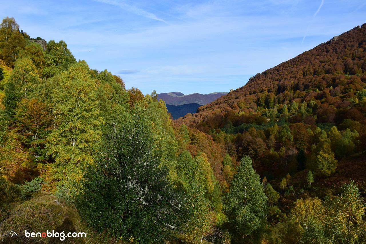 Hêtres, frênes, chêneset châtaigniers constituent les forêts de ce coin d'Ariège