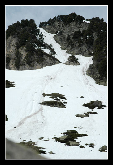 Couloir d'avalanches