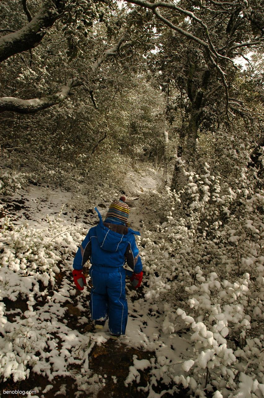 Balade neige Quillan - col du portel