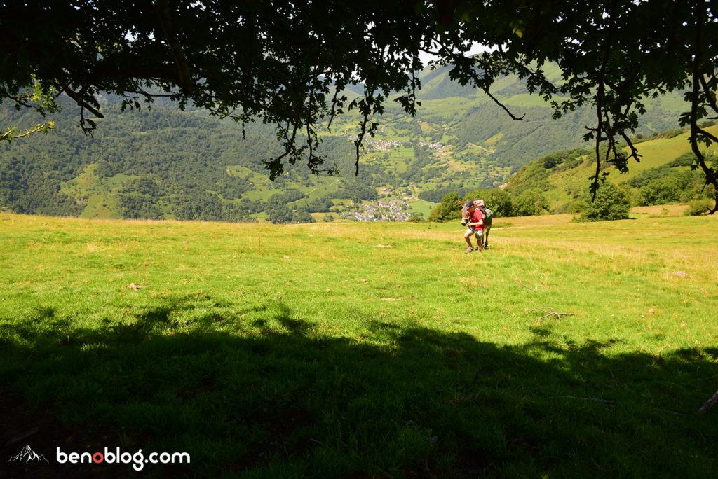Randonnée avec un âne - Petits Pas Castet